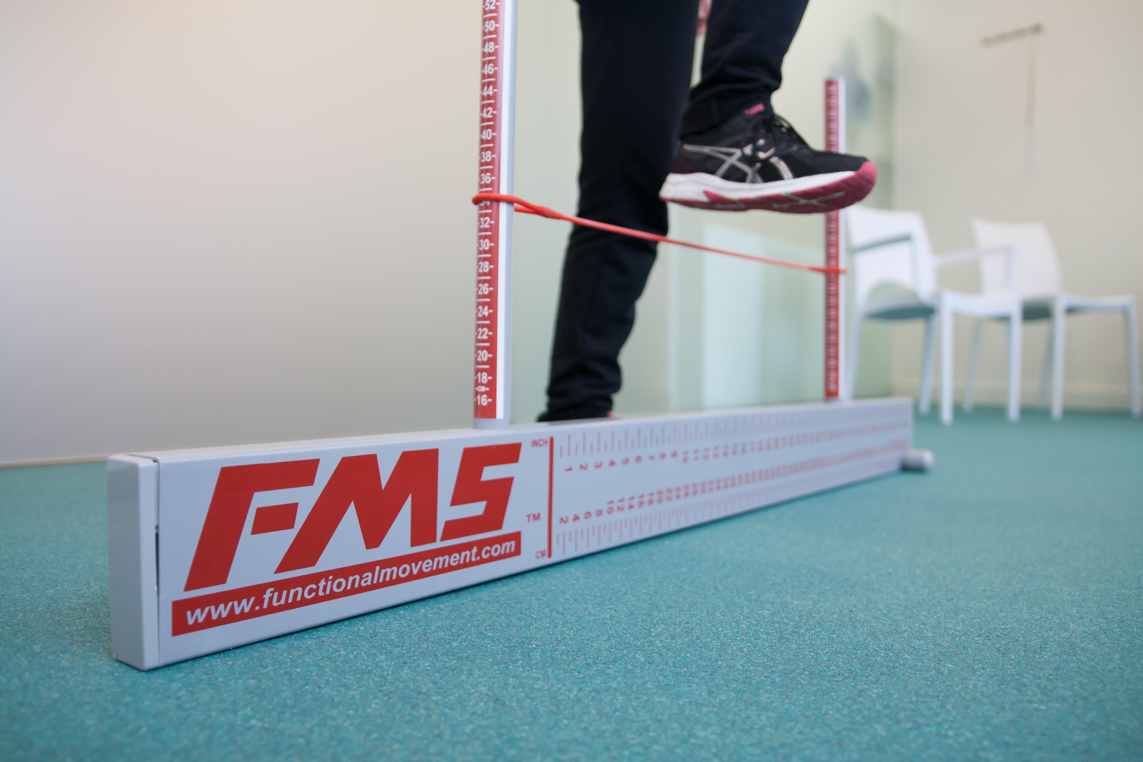 FMS 1